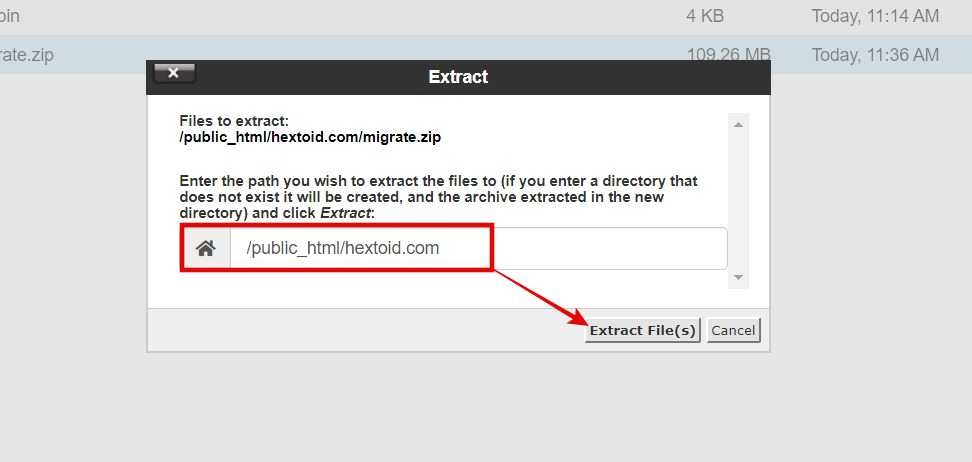 Extract the zip file in domain folder